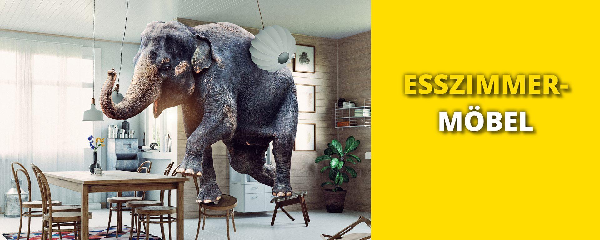 Esszimmermöbel Günstig Kaufen Wohnmaxx